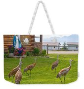 Sandhill Cranes On The Lawn By The Statue Of Mary In Homer-alaska Weekender Tote Bag