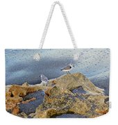 Sandpipers On Coral Beach Weekender Tote Bag