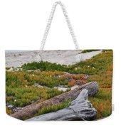Santa Monica Mountains County Line Beach Weekender Tote Bag