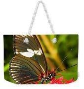 Sapho Longwing Butterfly Weekender Tote Bag