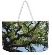 Savannah Live Oak And Spanish Moss Weekender Tote Bag