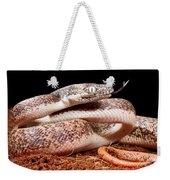 Savu Python In Defensive Posture Weekender Tote Bag
