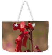 Scarlet Colorado Penstemons Weekender Tote Bag