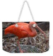 Scarlet Ibis One Legged Pose Weekender Tote Bag