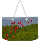 Scarlet Ibis Weekender Tote Bag by Tony Beck