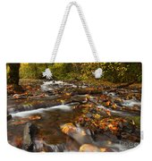 Scattered Leaves Weekender Tote Bag by Mike  Dawson
