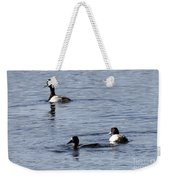Scaup Ducks In The Spring Weekender Tote Bag