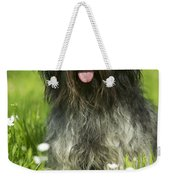 Schapendoes, Or Dutch Sheepdog Weekender Tote Bag