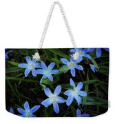 Scilla Flowers In The Morning Weekender Tote Bag