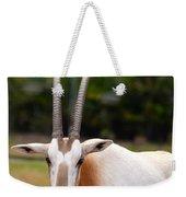 Scimitar Horned Oryx 2 Weekender Tote Bag