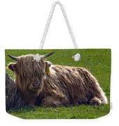 Scottish Highland Cattle 3                          Weekender Tote Bag