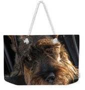 Scottish Terrier Closeup Weekender Tote Bag