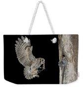 Screech Owl Feeding Owlets Weekender Tote Bag