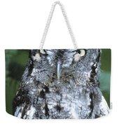 Screech Owl Straight On Weekender Tote Bag