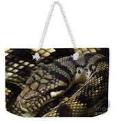Scrub Python Abstraction Weekender Tote Bag