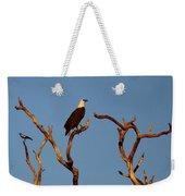 Sea-eagle And The Peewee Weekender Tote Bag