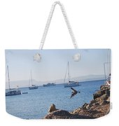 Sea Gull 2 Weekender Tote Bag
