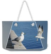 Sea Gull Away Out Of Bounds Weekender Tote Bag