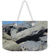 Sea Life 3 Weekender Tote Bag