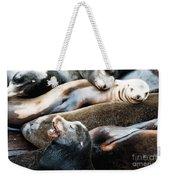 Sea Lion Dreams Weekender Tote Bag