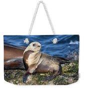 Sea Lion Pup Weekender Tote Bag