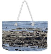 Sea Lion Resort Weekender Tote Bag