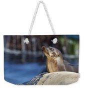 Sea Lion Resting Weekender Tote Bag