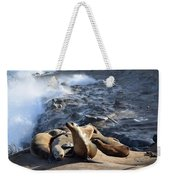 Sea Lions Seek Shelter Weekender Tote Bag