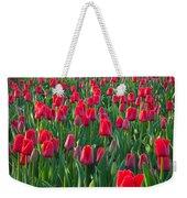 Sea Of Red Tulips Weekender Tote Bag