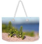 Sea Sandwort Weekender Tote Bag