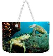 Sea Turtle Oil On Canvas Weekender Tote Bag