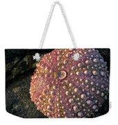 Sea Urchins Weekender Tote Bag