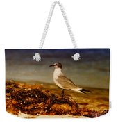 Seagull At The Keys Weekender Tote Bag