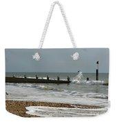 Seagull Groyne Weekender Tote Bag