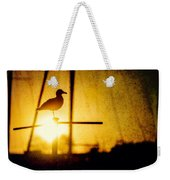 Seagull In Harbor Sunset Weekender Tote Bag
