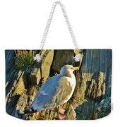 Seagull In Shadow Weekender Tote Bag
