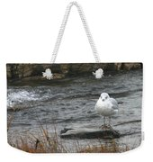 Seagull On Rock Weekender Tote Bag