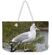 Seagull Outlook Weekender Tote Bag