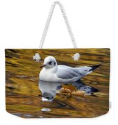 Seagull Resting Among Fall Leaves Weekender Tote Bag