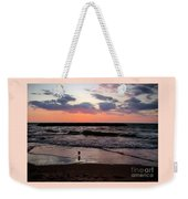 Seagull With Sunset Weekender Tote Bag