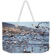 Seagulls Seagulls And More Seagulls Weekender Tote Bag
