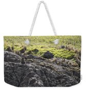Seal - Montague Island - Austrlalia Weekender Tote Bag