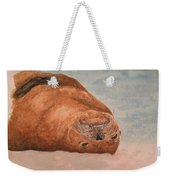 Seal 1 Weekender Tote Bag