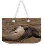 Seal And Pups Weekender Tote Bag