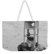 Seal Nap Time Black And White Weekender Tote Bag