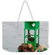 Seal Nap Time Weekender Tote Bag