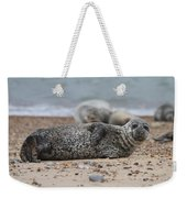 Seal Pup On Beach Weekender Tote Bag