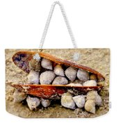 Seashell Reunion Weekender Tote Bag