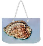 Seashell Wall Art 9 - Harpa Ventricosa Weekender Tote Bag