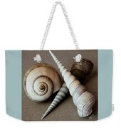 Seashells Spectacular No 24 Weekender Tote Bag by Ben and Raisa Gertsberg